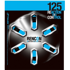 RENCON125_allocation_300_300